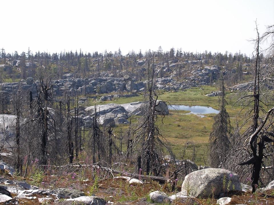 gora-vottovaara